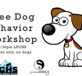 free dog behavior workshop