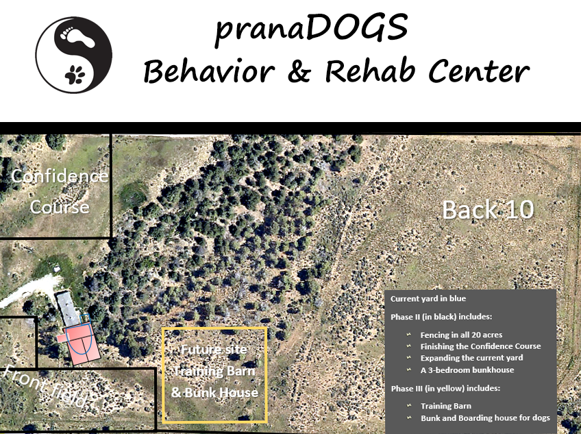 pranaDOGS Canine Behavior & Rehab Center